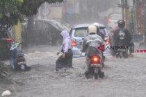 BPBD sebut Kota Malang dilanda 197 kejadian bencana