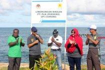 PLN buka lowongan pegawai khusus orang Papua