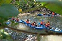"""Jaga lingkungan, \""""susur mangrove\"""" digelar Dinas Perikanan Denpasar"""