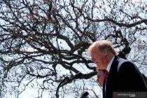 GCC sesalkan seruan Trump mengenai Dataran Tinggi Golan