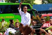 Jokowi bakal temui kaum milenal Banyuwangi