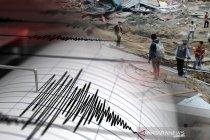 Tujuh tewas, ribuan gedung roboh akibat gempa di perbatasan Turki-Iran
