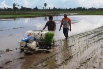 Alsintan, cara pemerintah kembangkan pertanian modern