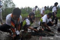 SMN Kalsel tanam mangrove dan lepas tukik di Kota Pariaman