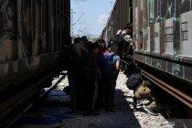 Bulgaria, Yunani perketat perbatasan cegah imigran masuk