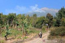 Kebakaran hutan melanda lereng Gunung Sumbing