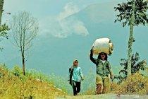 Kebakaran hutan di gunung Sumbing