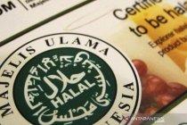 Halal Watch: Nota kesepahaman perlemah MUI