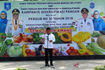 Wali kota sebut 30 kilogram sabu beredar di Bangka Belitung