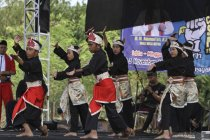 Hilmar Farid jelaskan perbedaan silat indonesia dan Malaysia