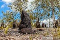 Belum ada perhatian terhadap situs Megalitik Tutari Papua