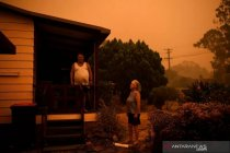 Piza 103 meter untuk  galang dana bagi pemadam kebakaran Australia
