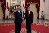 Presiden Jokowi tawari PM Hungaria investasi di ibu kota baru