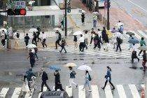 Gubernur Tokyo serukan pembatasan perjalanan selama musim liburan