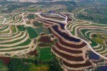 Wisata pengobatan tradisional Tionghoa meningkat di Pegunungan Taihang