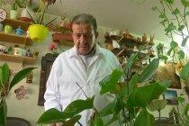 Nizar al-Halaby, dokter yang berkebun di kliniknya