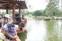 Kebun raya pilihan favorit warga Kuba untuk relaksasi