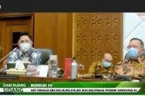 DPR dorong Kementan jamin ketersediaan bibit unggul