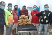 Polisi Perbaungan sita 14,2 kg ganja dari pasutri di Sumut
