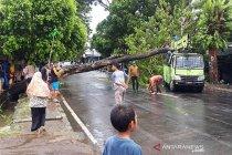 52 rumah dan fasilitas umum di Morotai rusak akibat cuaca ekstrem