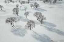 Pemandangan musim dingin di Hebei, China
