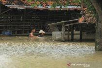 Banjir akibat luapan sungai Cimanuk di Indramayu