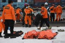Basarnas temukan 14 kantong jasad dan serpihan SJ-182 di hari ke-9
