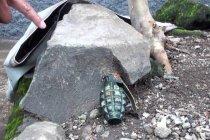 Warga temukan granat aktif di aliran Sungai Anak Cikapundung