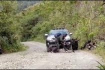 Polda Papua bersinergi atasi penembakan KKB di Intan Jaya