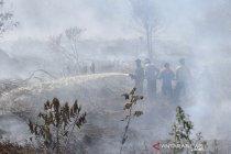 Kebakaran lahan gambut di Aceh Barat dan Nagan Raya
