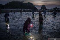 Tradisi Bau Nyale masyarakat Sasak Lombok