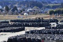Jepang buang air terkontaminasi stasiun nuklir Fukushima ke laut
