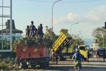 Pemerintah dan warga Kota Kupang masih bersih-bersih pascabencana