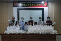 Polda Banten gagalkan penyelundupan 34.992 benih lobster