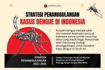 Strategi penanggulangan kasus dengue di Indonesia