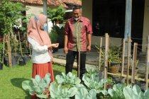 KWT Lampung kelola lahan pekarangan cegah konflik gajah dengan manusia