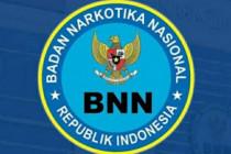 BNN: Pengguna narkotika memerlukan pengobatan