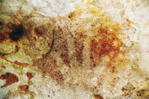 488 motif gambar cadas prasejarah ditemukan di Pulau Kaimear