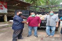 2.000 domba kurban warga Singapura-Malaysia-Brunai dibagikan ke Sumut