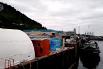 Alaska diguncang gempa terkuat di Amerika Utara dalam 56 tahun