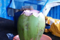Air kelapa hijau tingkatkan imunitas?