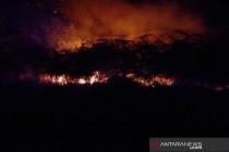 BPBD Penajam waspadai ancaman kebakaran hutan-lahan pada musim kemarau