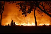 Patahkan prediksi, Indonesia berhasil cegah bencana asap karhutla dua tahun berturut-turut