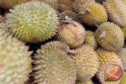 """Durian Bengkulu """"banjiri"""" Kota Palembang"""
