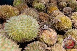 Takaran tepat saat makan durian