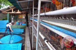 Kementerian ESDM kembangkan biogas di pesantren