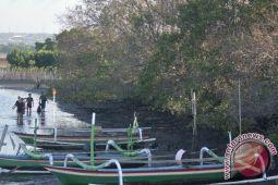 Hari Pohon Sintalaras UNM tanam 2.000 mangrove