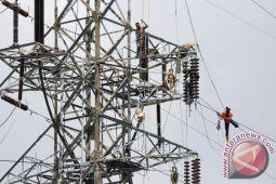 Ular tersetrum bikin padam listrik Muara Teweh