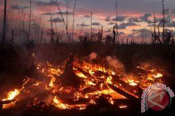 Dana desa bisa untuk pencegahan kebakaran hutan-lahan