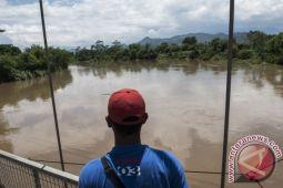 Pemulihan hulu Citarum akan berkaca pada Hutan Amazon